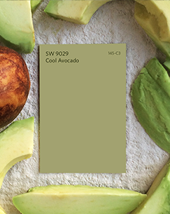 SW 9029 Cool Avocado