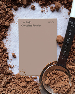 SW 9082 Chocolate Powder